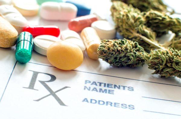 Aceite de CBD, Flores de CBD, Curso Cannabis y Cáncer
